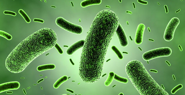 Legionella v PŘEROVĚ
